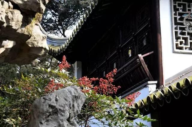 历数七大中国古典园林植物