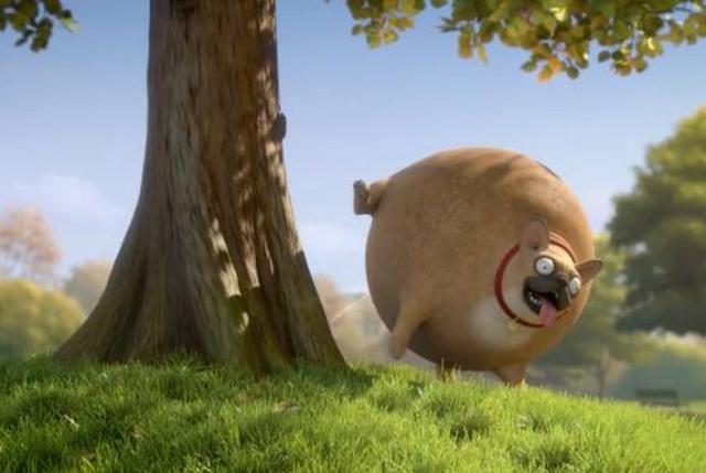 """当世界上的动物都变成了""""小胖子""""时,你会怎么看"""