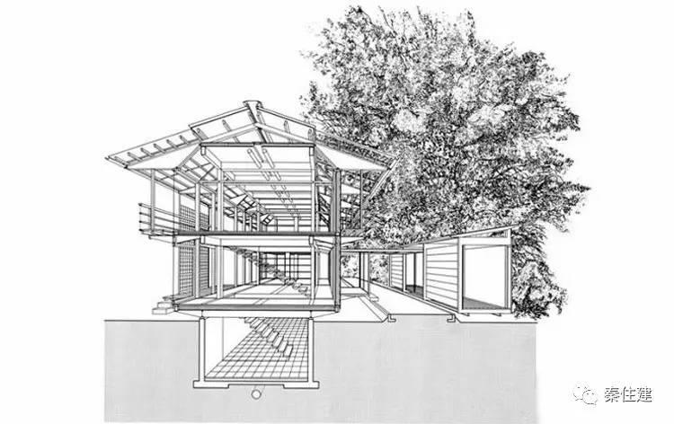 建筑树木手绘画法