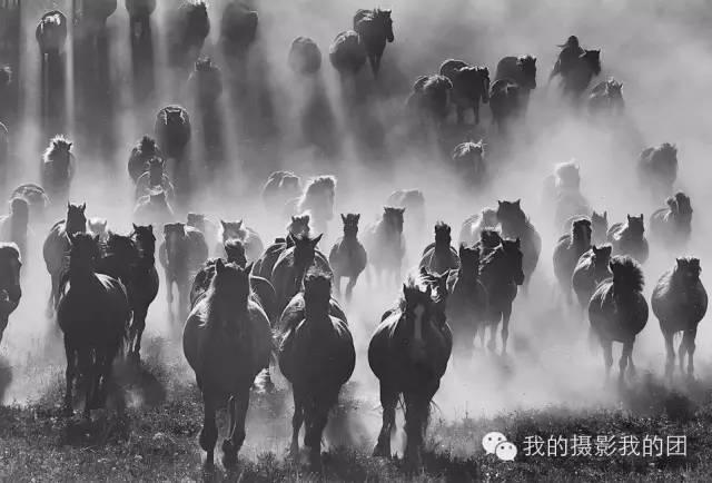 二届金秋坝上 万马奔腾 蟠龙山长城影友联谊赛摄影创作团图片