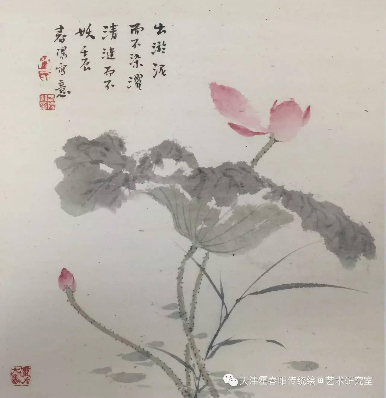 无尘霍九歌荷花v九歌(三)春阳电影迅雷下载图片