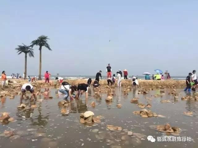 【水浒旅行社】秦皇岛,北戴河,沙雕海洋乐园三日游528