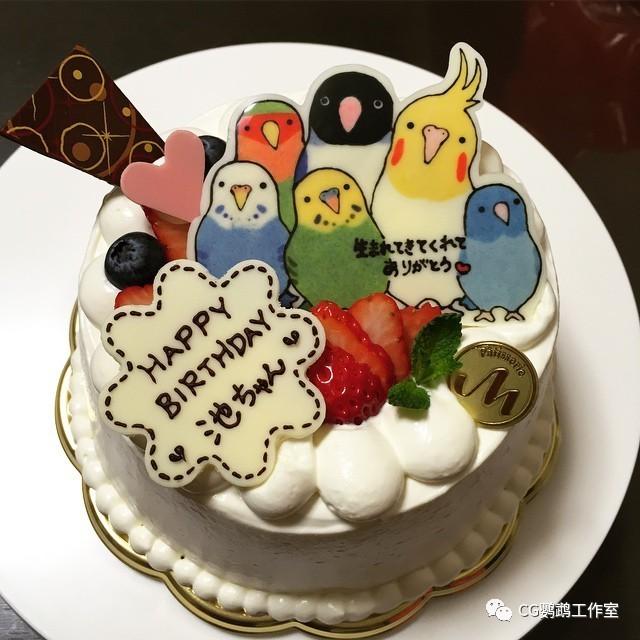 鸟奴们过生日怎么能少了鹦鹉蛋糕呢?快来挑一款你喜欢图片