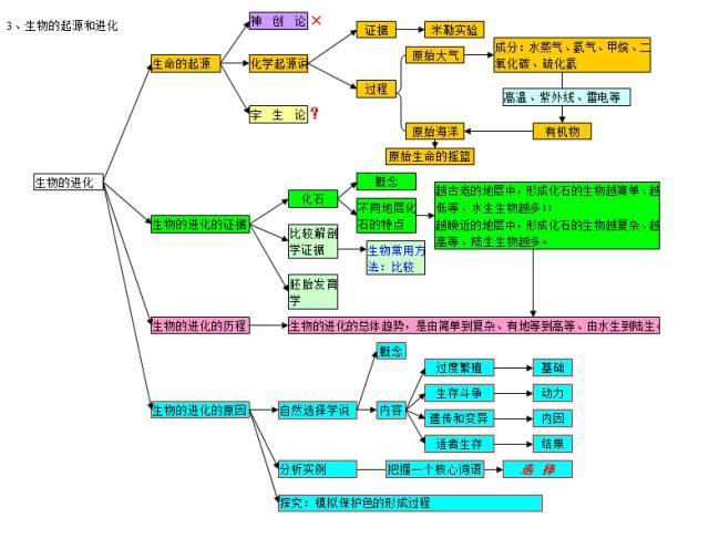 初中生物 学科思维导图,10个专题扫清三年知识点 附 70个易忽略知识点