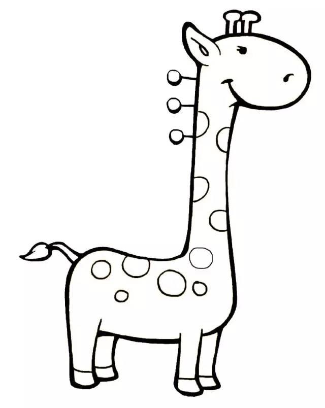 动物吃东西简笔画