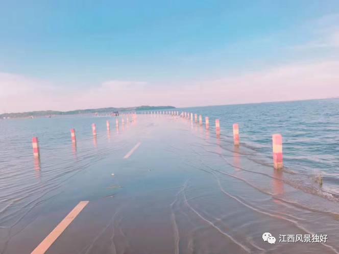 夏日,鄱阳湖水位迅猛上涨,漫过永吴公路大湖池段,形成了充满动漫式