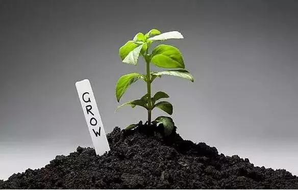 有机肥主要来源于植物和(或)动物,施于土壤以提供植物营养为其主要