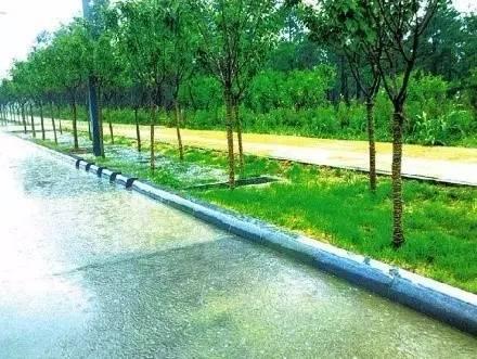 城市道路海绵方案设计指引