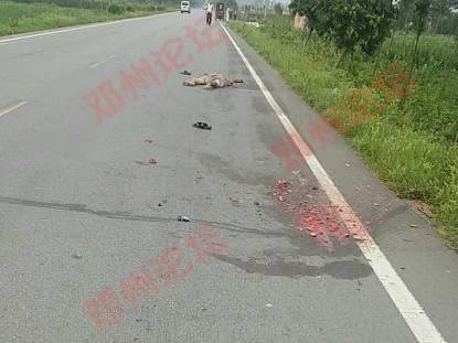 过于血腥,胆小慎点!邓州248省道段惨烈车祸图片
