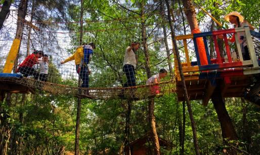 清凉夏日遇上探险,精彩就在松鼠部落森林假日公园!图片