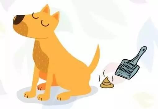 【关注】遛狗带口罩,牵狗绳,收拾狗便——文明养宠图片