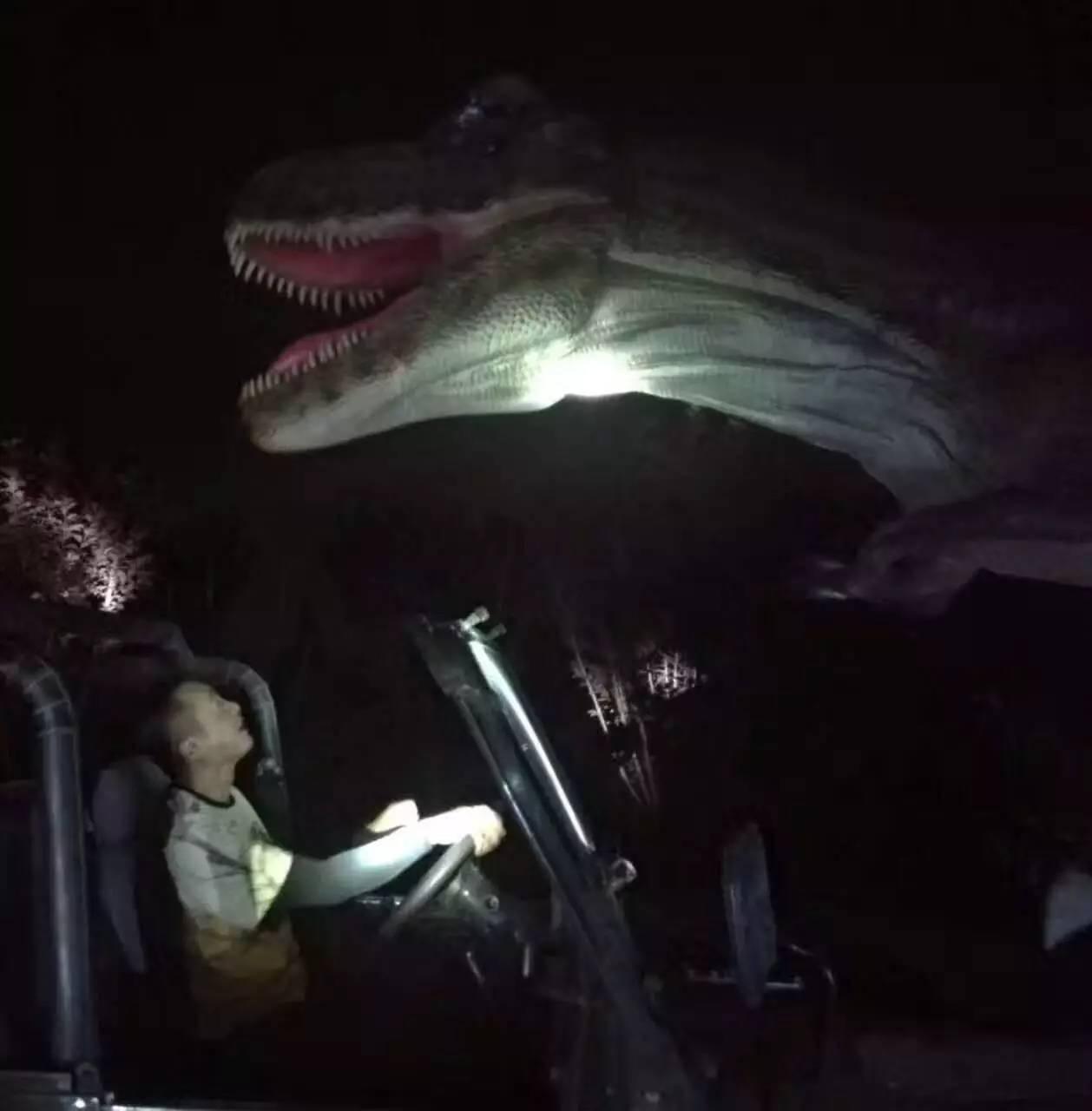 最野的动物之旅 亲子夜宿北京野生动物园