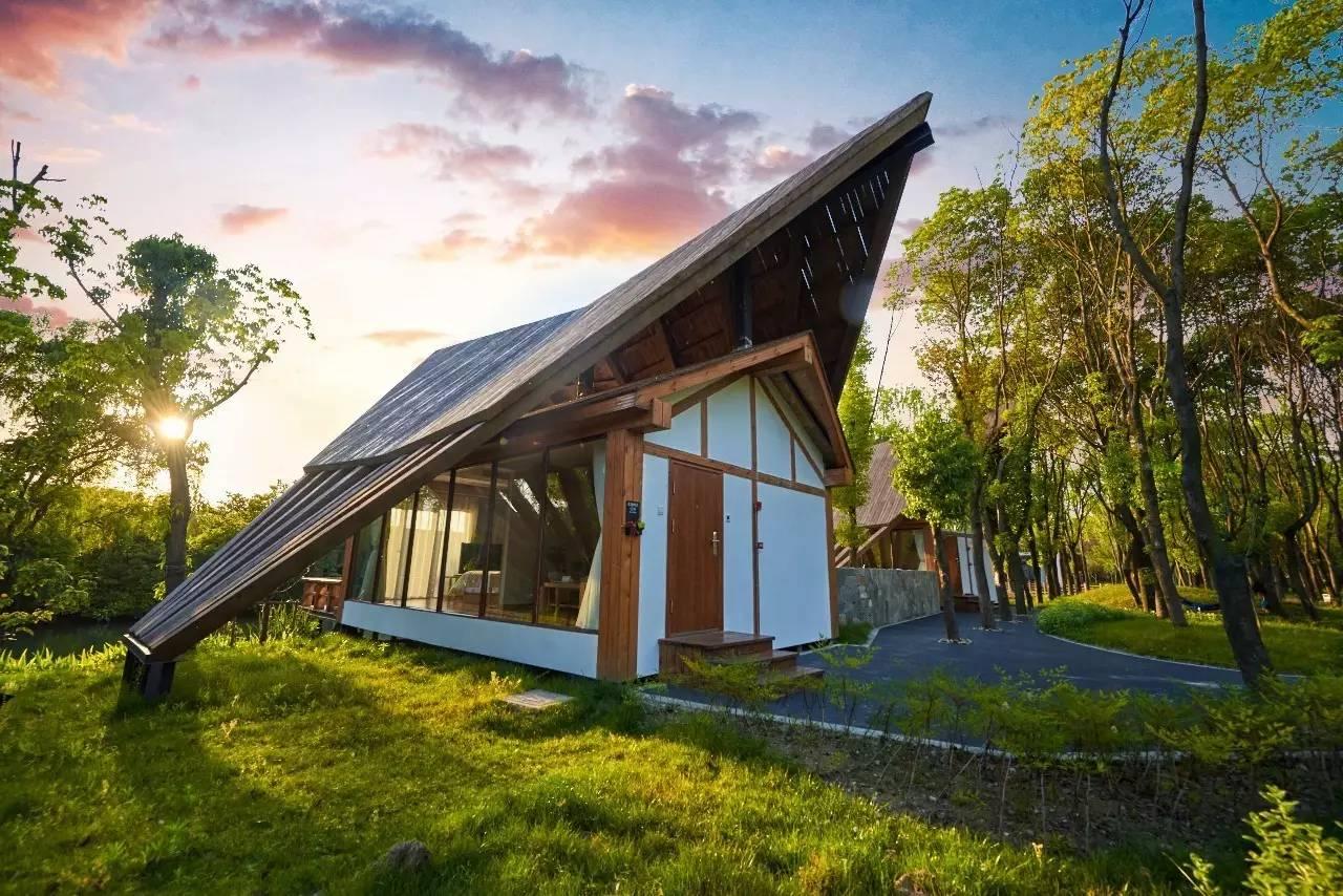 片能避暑的秘密森林,还能躺在玻璃木屋中看星星