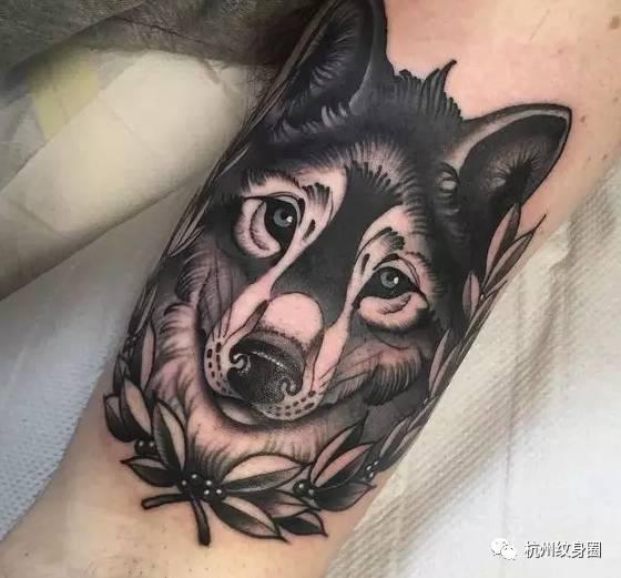 tattoo | 纹身素材:狼