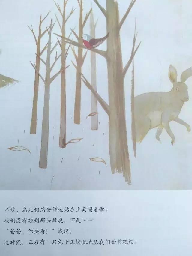 《和爸爸一起散步》内页分享 在线观看-第21张图片-58绘本网-专注儿童绘本批发销售。