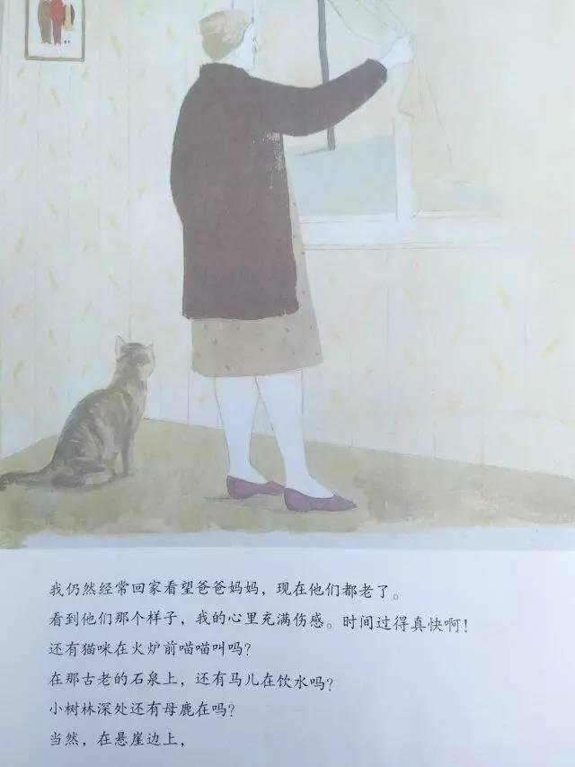 《和爸爸一起散步》内页分享 在线观看-第18张图片-58绘本网-专注儿童绘本批发销售。