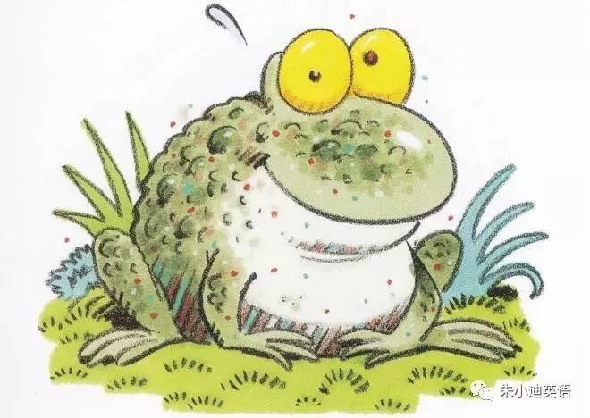 朱小迪英语拼读:toad's lost roast(蛤蟆弄丢了烤肉)