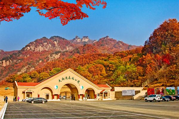 一季一世界,四季四重天:丹东旅游资深导游带您走进风景如画的丹东