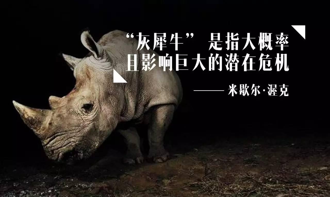 吴晓波 对痴迷房产的中国人来说,灰犀牛比黑天鹅恐怖1万倍