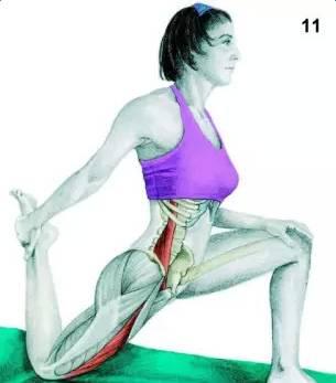 锻炼部位:腰肌,四头肌