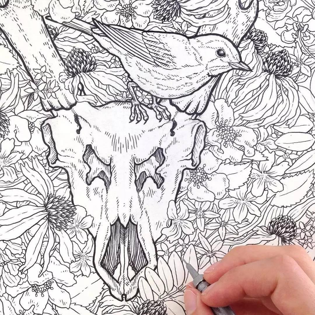 她用针管笔画的线描图 一群动物其乐融融的画面 简直不要太协调