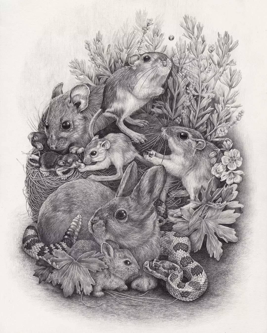 她的画大多是用铅笔或者针管笔绘制出来的 / 她画笔下的动物都可以开