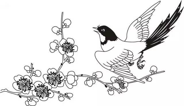 黑白边框手绘梅花