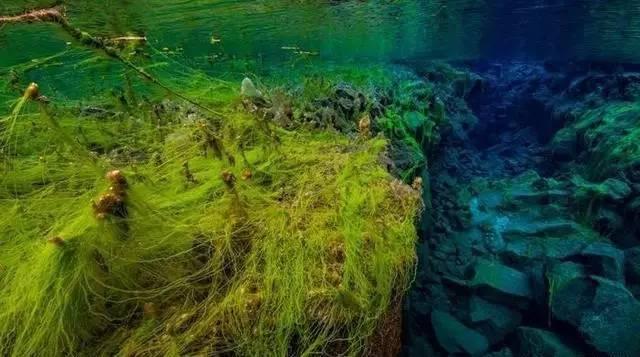 旅游 正文  silfra(冰岛大裂缝丝浮拉),是辛格韦德利国家公园内的著名