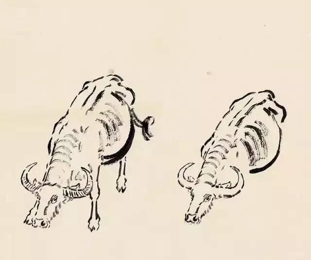 徐悲鸿的马,牛,狮子,猫的画法步骤