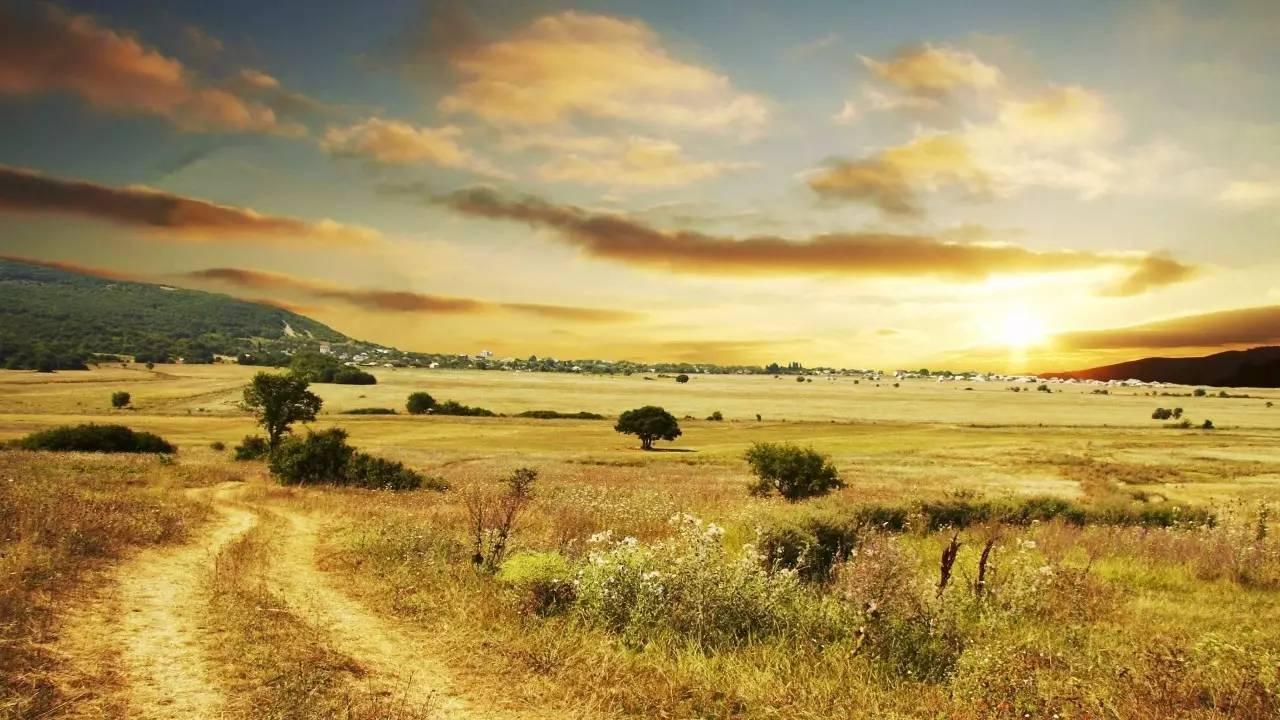 马赛马拉自然保护区