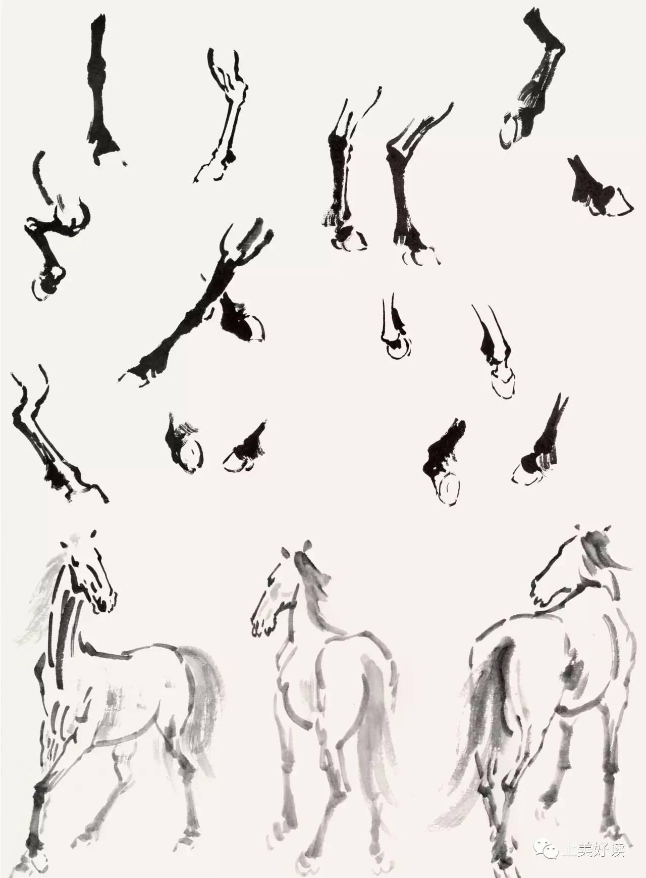 画马的步骤素描-2017上海书展 名家讲稿大师精选 百年巨匠传世之作图片