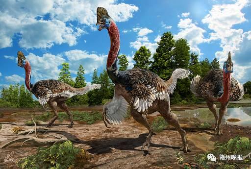 报国家级 赣州恐龙化石保护区