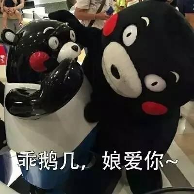 搞笑表情 | 想你,想发熊本熊表情包给你图片