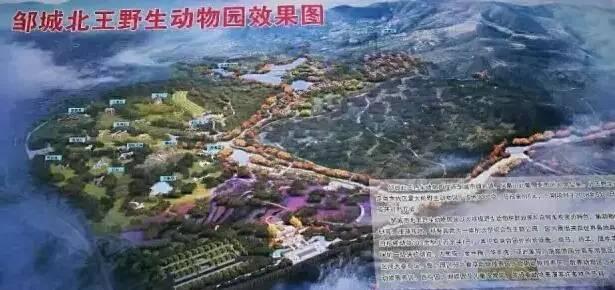鲁南最大野生动物园邹城开建