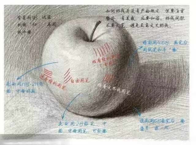 素描教程 | 最详细画苹果解析