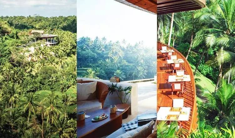 旅游 正文  坐落于巴厘岛中部山谷,占地243亩的乌布四季酒店曾被评为