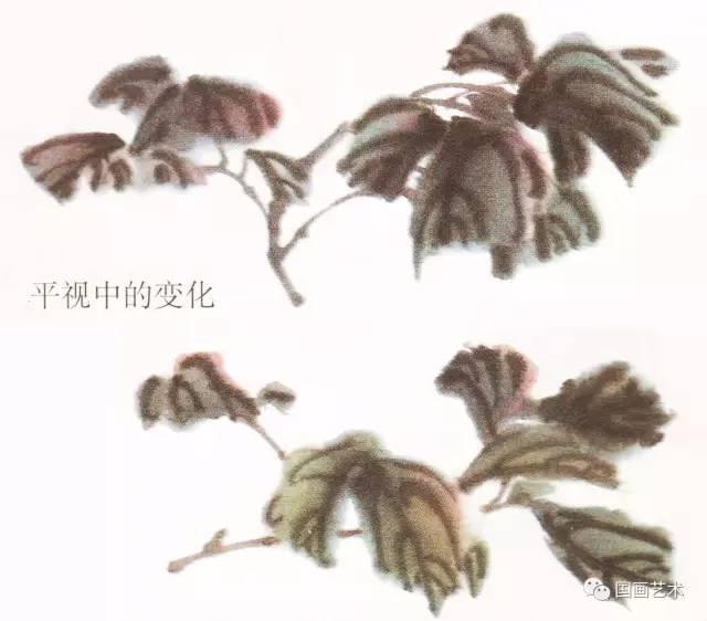 「梅洛|推荐」写意牡丹叶子的画法图片