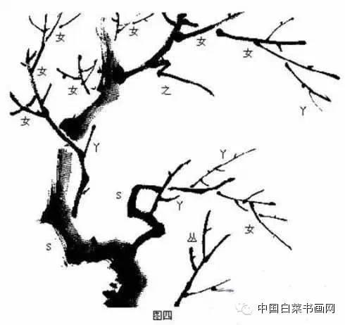 文化 正文  梅花枝干姿态各异,有上发,下垂,横倚和回折等.