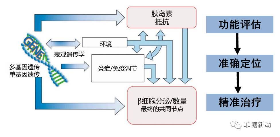 放疗主要依据的是什么原理_放疗是什么过程图解