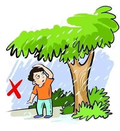 下雨天小朋友们应该注意什么呢?动物森林的小动物们告诉小朋友答案吧!