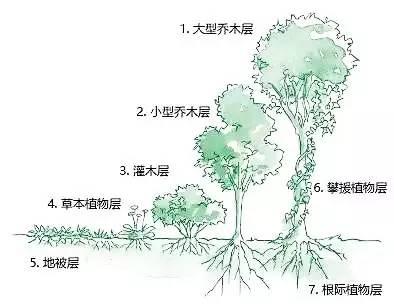 手绘农田简笔画