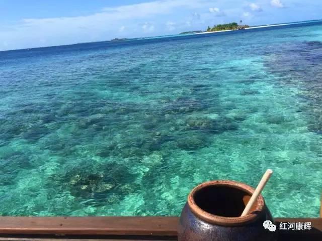 游记:马尔代夫之芳姐马富士瓦鲁岛之旅.(对,你没看错,御姐又去马代了)
