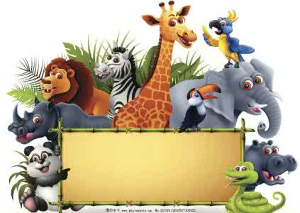 英语单词速记—动物(animals)单词(补充版)