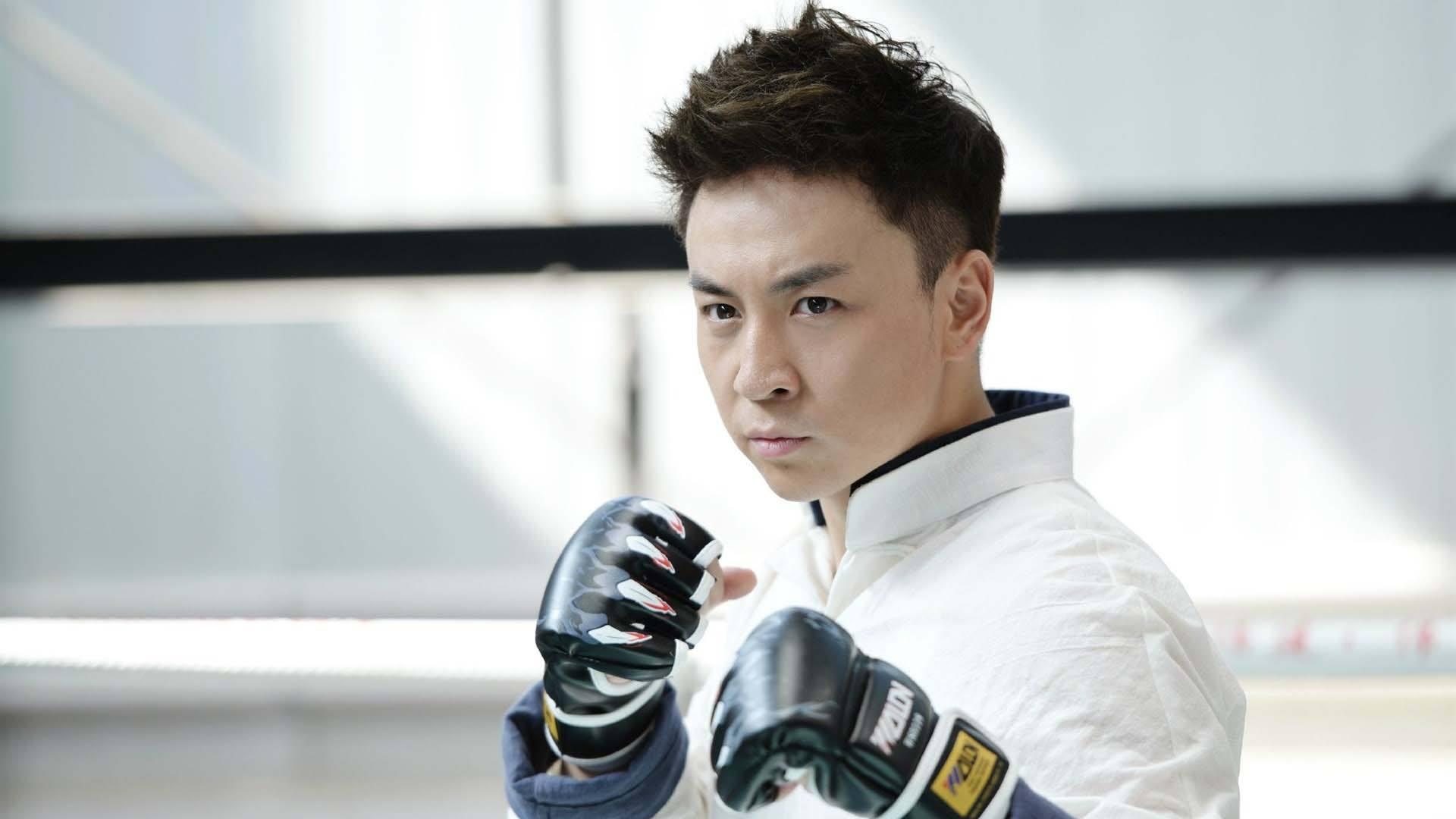 战狼2破42亿吴京成巨星,还有八位功夫明星待爆发