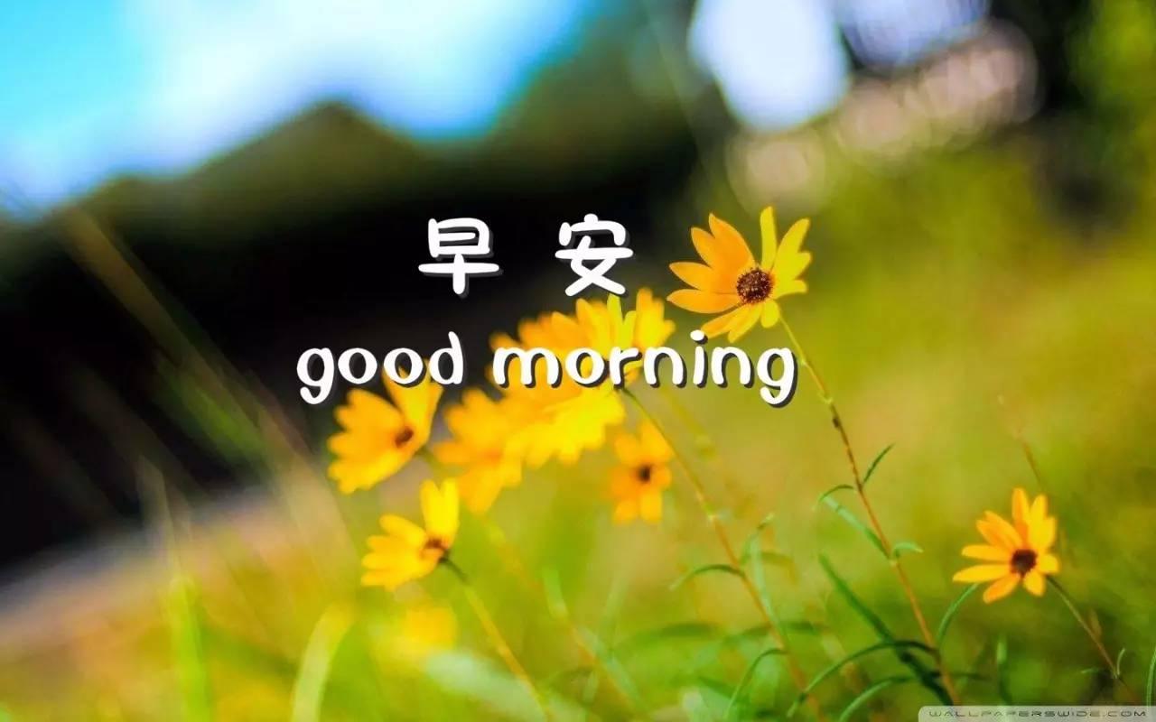 早安图片带字 早安图片唯美励志语录