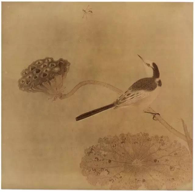 蝶荷花水墨画-残败的荷叶暗示了秋日荷塘的一角,一枝枯瘦的莲蓬横出画面,鹡鸰栖