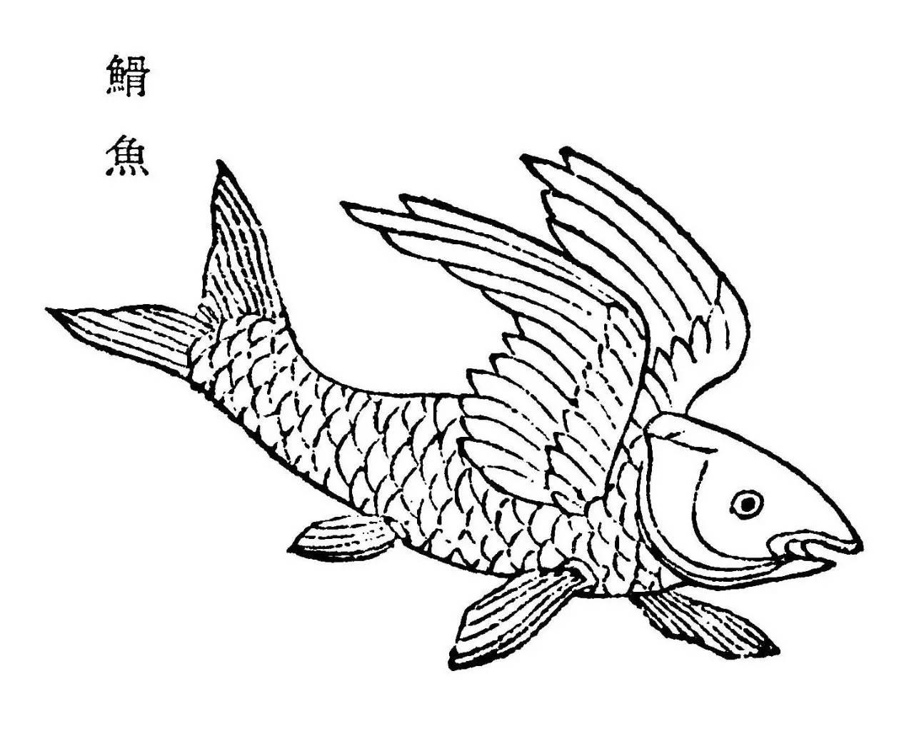 山海经 里的鱼与怪鱼