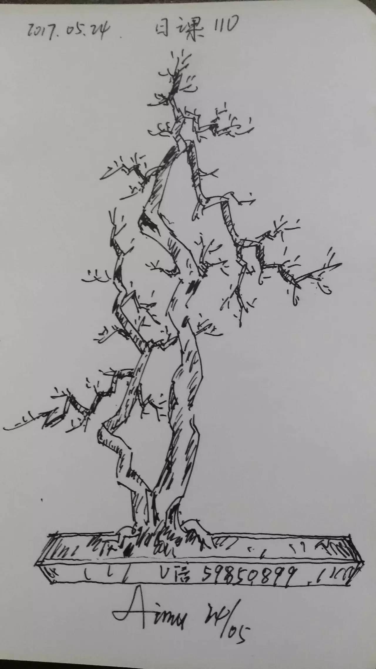 简笔画 盆景 盆栽 手绘 线稿 植物 1280_2275 竖版 竖屏