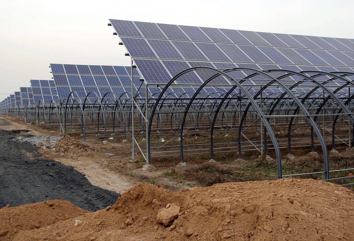 既能发电又能种植的温室大棚,还真是不一样的设计方案.