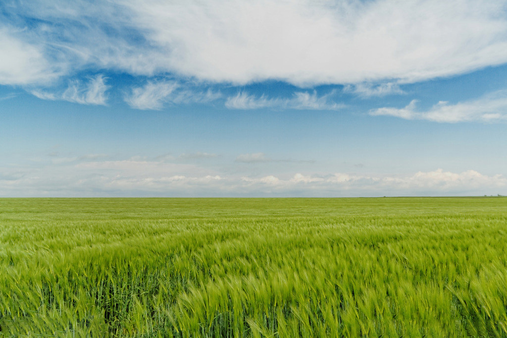 财经 正文  时代在变,农村也在变 曾经的农民:面朝黄土背朝天 现在的
